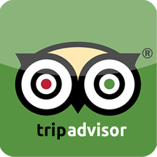 Coachings_Icon_Tripadvisor
